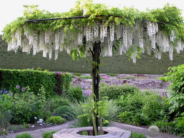 N dijk van een tuin alle uitjes voordeeluitjes nederland - Alle tuin ...
