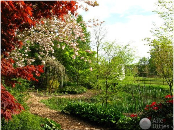 Arboretum Oudenbosch