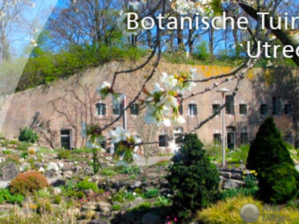Botanische Tuin Alkmaar : Botanische tuinen utrecht alle uitjes voordeeluitjes nederland