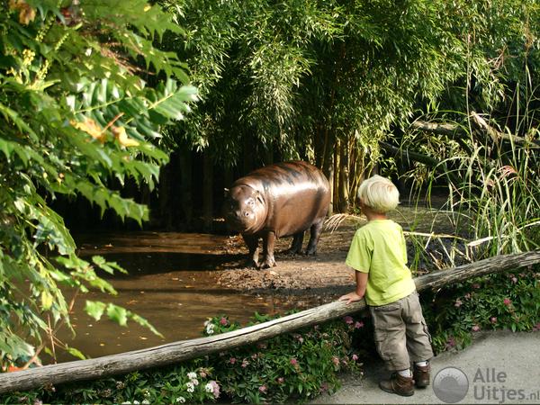 Dierenpark Wissel