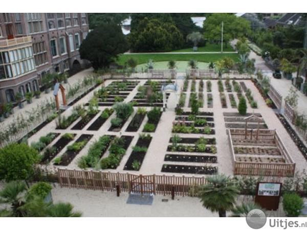 Botanische Tuin Leiden : Hortus botanicus leiden alle uitjes voordeeluitjes nederland